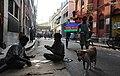 India's marathon vote - Flickr - Al Jazeera English.jpg