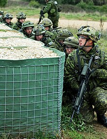 India Company, 2nd Battalion, Royal Canadian Regiment.jpg