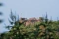 Indien2012 1340 Mahur Fort.jpg