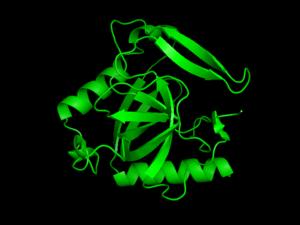 Inorganic pyrophosphatase - Image: Inorganic pyrophosphatase