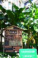 Insect shelter, Monaco.jpg