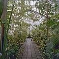 Interieur, overzicht plantenkas - Delft - 20404916 - RCE.jpg