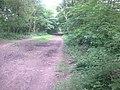 Irwell Valley Way Bridleway - geograph.org.uk - 1337358.jpg