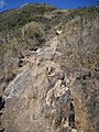 Isabeloca^ - panoramio (3).jpg