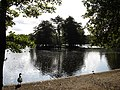 Island in the Lake, Wollaton Park - geograph.org.uk - 1008625.jpg