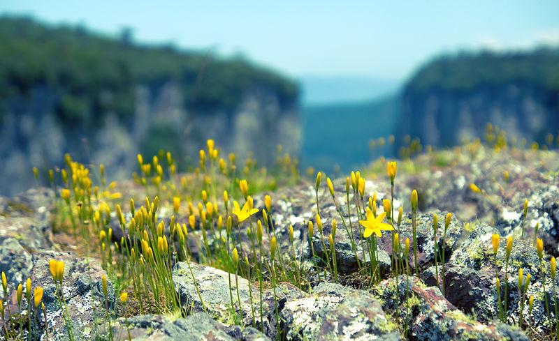 File:Itaimbezinho Canyon 3.jpg