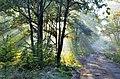 Jabłonna - Buchnik - panoramio.jpg