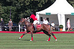 Jaeger-LeCoultre Polo Masters 2013 - 31082013 - Final match Poloyou vs Lynx Energy 34.jpg