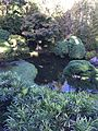 Japanese Tea Garden 1 San Francisco.JPG