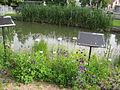 Jardin botanique Besançon 004.jpg
