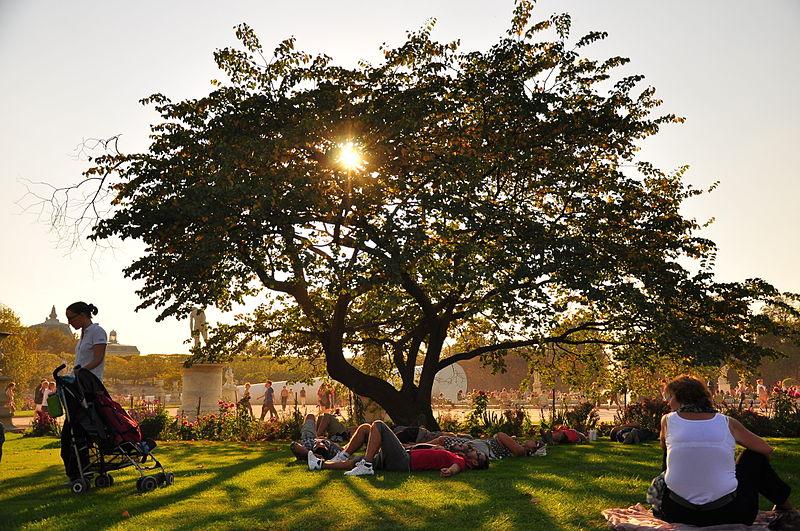 File:Jardin des Tuileries October 2, 2011.jpg