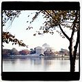 Jefferson Memorial in fall.jpg