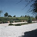 Jeruzalem Nationale begraafplaats Herzlberg weg met begroeide talud, Bestanddeelnr 255-9298.jpg