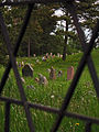 Jewish Cemetery in Druja - panoramio - Andrej Kuźniečyk.jpg