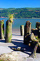 Jones Beach Pilings (Columbia County, Oregon scenic images) (colDA0028).jpg