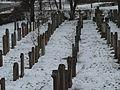 Juedischer Friedhof Freistett 23 fcm.jpg