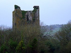 Kilcrea Castle, Farran, Co. Cork - geograph.org.uk - 1243394.jpg