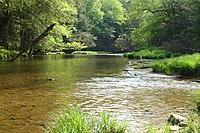 Kinzua Creek.JPG
