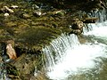 Kis vízesés a Ponor patakon - panoramio.jpg