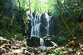 Koleshinski vodopad 27.JPG