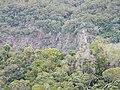 Kuranda QLD 4881, Australia - panoramio (45).jpg