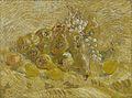 Kweeperen, citroenen, peren en druiven - s0023V1962 - Van Gogh Museum.jpg