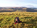 Kyloe Shin summit - geograph.org.uk - 1619030.jpg