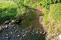 Lage - 2015-05-20 - LIP-082 Werreniederung und Haferbach (31).jpg