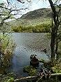 Lago Argentino Department, Santa Cruz Province, Argentina - panoramio (4).jpg
