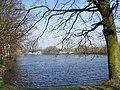 Lake, Teddesley Park - geograph.org.uk - 385521.jpg