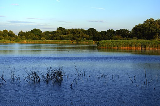 Lake in South Cerney, Gloucestershire