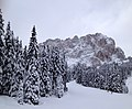 Langkofel from Plan de Gralba under snow 2012.jpg