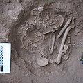 Lapa do Santo - Sepultamento 21 - Foto de campo exposicao 3.jpg