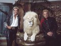 Las Vegas, Nevada's headlining illusionists Siegfried & Roy (Siegried Fischbacher and Roy Horn) in their private apartment at the Mirage Hotel on the Vegas Strip, along with one of their LCCN2011634015.tif