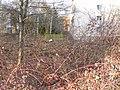 Lauterborn Weidigweg 6.jpg