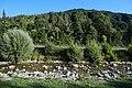 Le Borne @ Village @ Le Grand-Bornand (51049435978).jpg