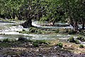 Le fleuve côtier Lez à Lavalette.JPG