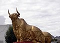 Lhasa3.jpg