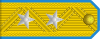 Lieutenant General of the Air Force rank insignia (North Korea).svg