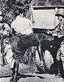 Lieutnant Enrique Escobar.jpg