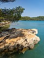 Limestone rock in the small salt lake Malo Jezero on Mljet, Croatia (48738576983).jpg