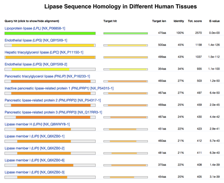 File:Lipase Sequence Homology.png