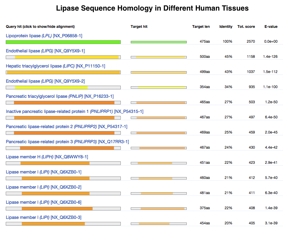 Lipase Sequence Homology