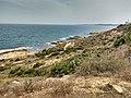 Litoral de Cabo Roig.jpg