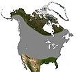 Little Brown Bat North America Range.jpg