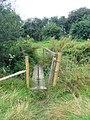 Little footbridge at the edge of Amberley Wild Brooks - geograph.org.uk - 1073717.jpg