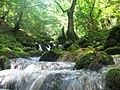 Ljestanica river.jpg
