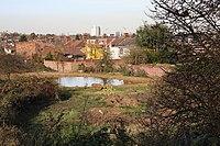 Long Lane Pasture - geograph.org.uk - 614625.jpg