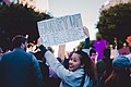 Los Angeles Women's March (24935216137).jpg