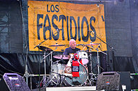 Los Fastidios – 825. Hamburger Hafengeburtstag 2014 01.jpg